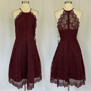 Laundry by Shelli Segal Lace Fit and Flare Dress